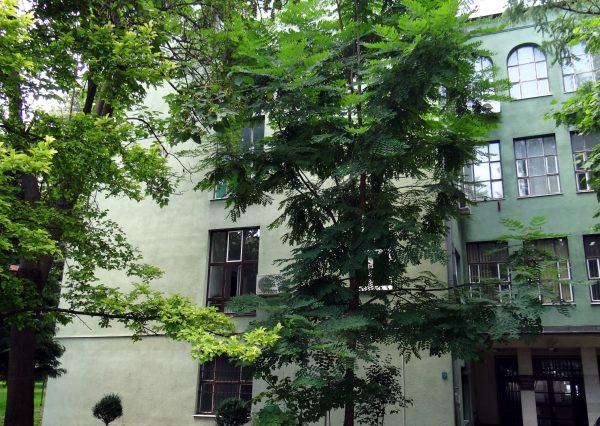 sumarski-fakultet-zgrada
